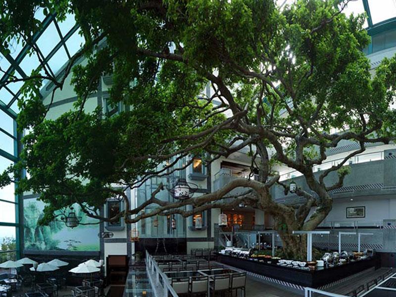 海洋溫泉飯店03