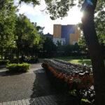 西湖捷運整棟大樓 (4)