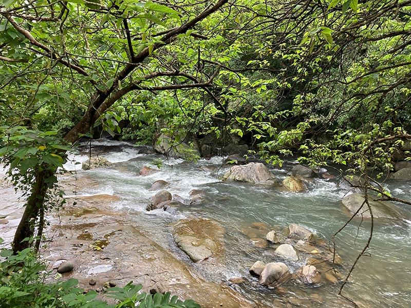 雙溪溪邊土地01