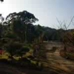 大溪虎豹坑土地 (10)